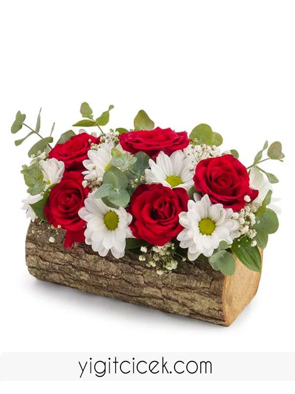 kütükte papatya ve kırmızı güller