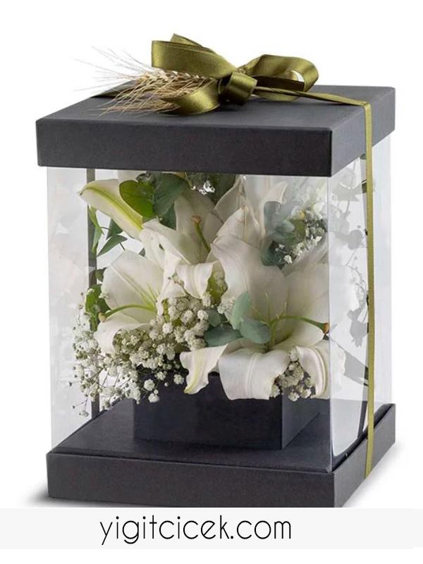 kutuda lilyumlar