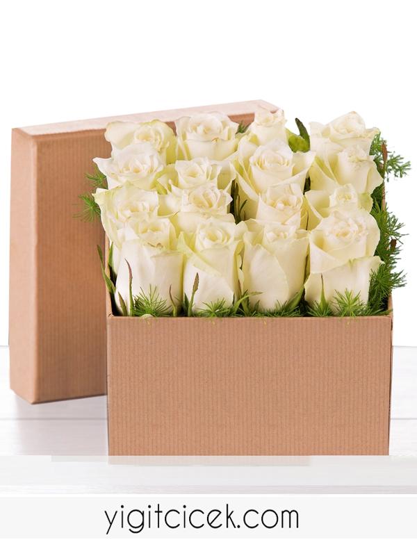 Asil Beyaz Güller