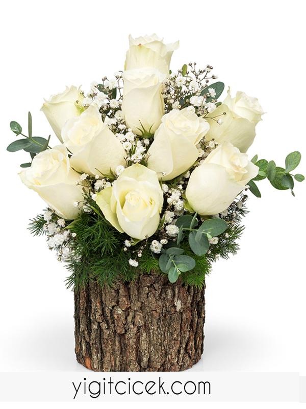 kütükte beyaz güller