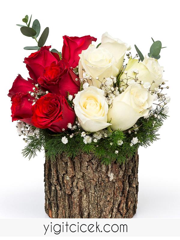 kütükte kırmızı beyaz güller