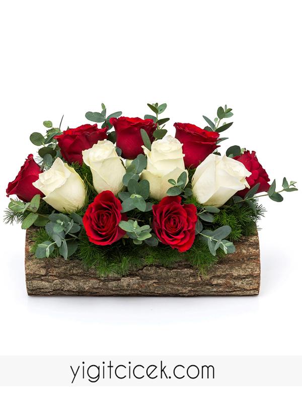 kütükte beyaz ve kırmızı güller